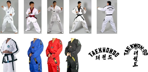 taekwondo anzug kwon
